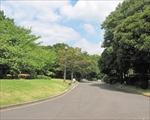 国会前庭庭園