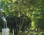 新宿中央公園[公園]