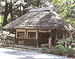 小石川後楽園[庭園・植物園]
