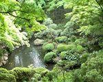 殿ケ谷戸庭園