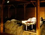 天然温泉 ロテンガーデン