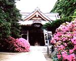 祇園山安養院(坂東三十三観音 第3番札所)