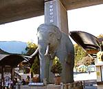 日野・多摩動物公園周辺